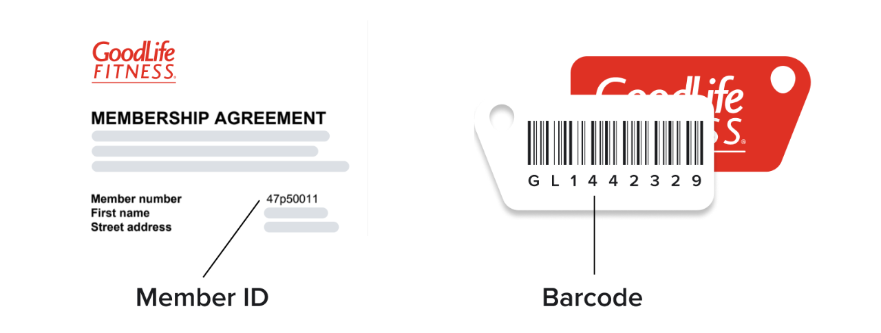 8-digit Member ID is labelled on the Membership Agreement as part of the Member's information.